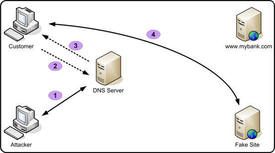 dns name resolution process pdf